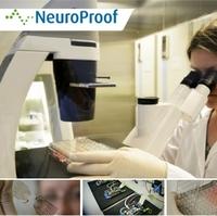 NeuroProof testet mit Nervenzellen auf einem Chip Medikamente