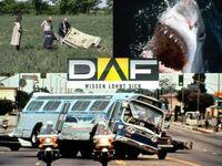 Die DAF-Highlights vom 30. Dezember 2013 bis 5. Januar 2014