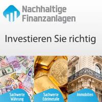 Sicher investieren - Nachhaltigefinanzanlagen.de zeigt wie