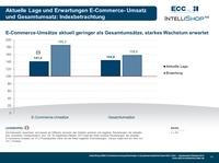 Konjunkturindex-Befragung: B2B Unternehmen erwarten steigende Bedeutung der E-Commerce-Umsätze