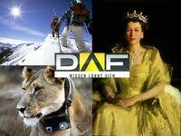 Die DAF-Highlights vom 6. bis 12. Januar 2014