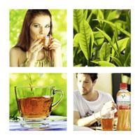 Trendkonzepte für Teegetränke