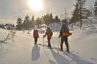 Ein Schulhalbjahr in der Wildnis: das OUTDOOR COLLEGE in Norwegen