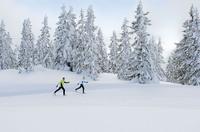 Skijäger und Alpin-Artisten