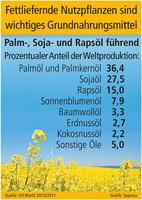Fettliefernde Nutzpflanzen sind wichtiges Grundnahrungsmittel