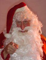 Weihnachten bei Pettersson und Findus