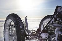 Liegedreirad-Tour zum Südpol