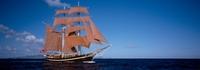 """Großsegler """"Eye of the Wind"""" fördert Sailtraining für Jugendliche"""