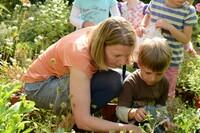 400 Bewerbungen für Kinder-Garten-Netzwerk