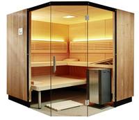 Neue levelone Designsauna Modern Times ist formaldehydfrei