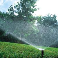 showimage Gartenbewässerung mit Rain Bird Bewässerungssystem hilft Wasser und Zeit sparen