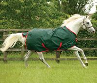 Reißfeste Pferdedecken - darauf müssen Sie beim Kauf achten!