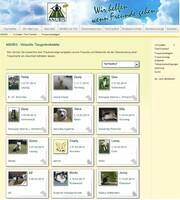 Enorme Besucherzahlen im virtuellen Tierfriedhof