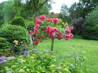 Wintergarten als Anbau der Immobilie: Zentraler Lebensraum mit einem Hauch von Nostalgie