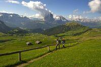 Viermal über die Alpen, bitte ...