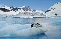 MS Delphin: deutschsprachige Antarktis-Kreuzfahrten 2015