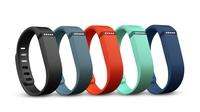 Fitbit Flex ab sofort in vier frischen, neuen Farben erhältlich