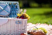 Der Frühling ist da - Genuß im Freien mit einem Picknick