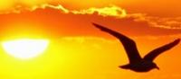 Lyrik-Literaturwettbewerb: Spirituelle Gedichte und Nahtod