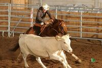 24. Ride Of America 2014 auf der Circle L Ranch