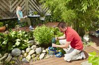 Sorgt für klare Sicht im Gartenteich