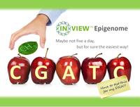 Epigenetikforschung und Exom-Sequenzierung  beide macht GATC Biotech Forschern und Medizinern auf der ESHG Tagung zugänglich