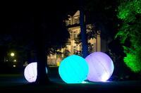 Licht- und Klangwelt Illumina 2014 in Bad Mergentheim: Der Mann, der die Bäume  sprechen und leuchten lässt