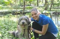 Deutsches Tierschutzbüro e.V. klärt auf: Nur ein schnelles Handeln kann Leben retten - Die Magendrehung des Hundes