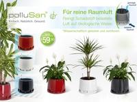 polluSan - Raumluftreinigung durch Zimmerpflanzen