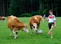 Fair Play im Grünen - auf Rasen und Wiese