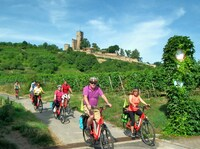 Entdecker Touren  im  Sommer mit Pedelecs  an der Deutschen  Weinstraße
