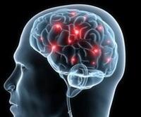 """Mega-Event """"Gehirn-Wissen"""" am 13. Dez. 2014 in Bonn - bereits über 700 Tickets sind verkauft!"""