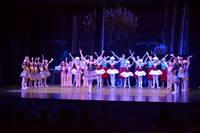 """Das Tanzwerk Ladenburg präsentierte am 6. Juli 2014 das Ballett-Theater """"Im Puppenladen"""" sowie """"Tanzimpressionen"""""""