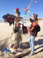 Kunst, Forschung & Naturschutz: die modernen Strandräuber von Texel