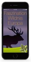 Wildtiere App: Faszinierende Photos von Europas Wildtieren