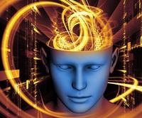 Kugelrunde Gehirn-Wissen-Pakete