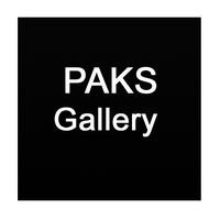 PAKS Gallery präsentiert internationale Kunst und Künstler.