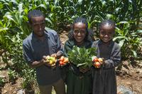 Menschen für Menschen: Nachhaltige Landwirtschaft in Äthiopien