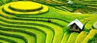 Auf Wegen des Feng Shui in Vietnam: Neue Entdeckungsreise von Enchanting-Travels