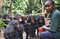 SeaWorld & Busch Gardens Conservation Fund unterstützt  57 Tierschutz-Projekte in Afrika und Südamerika