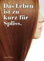 Hairstylers heaven auch im Dienstleisterverzeichnis Zuqi