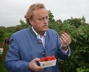 Rote Früchte sind der Renner