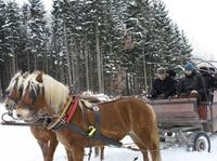 Blaues Land in Weiß: Winter rund um Murnau