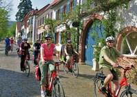 genussradeln-pfalz Programm 2015 - Pfalz mit E-Bikes entdecken