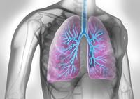 Fortschritte bei der Therapie von Lungenerkrankungen