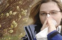 Pollenallergiker aufgepasst: Mit einer Heilpilzkur im Winter können auch Heuschnupfengeplagte den Frühling wieder genießen