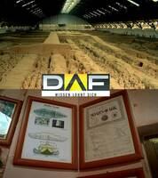 Die DAF-Highlights vom 2. bis 8. Februar 2015