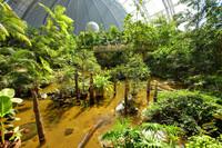 RTL-Dschungelcamp doch nicht im Tropical Islands