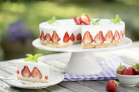 Lust auf Erdbeeren?