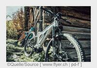 E-Bike 2015: Sport, Komfort und Innovation